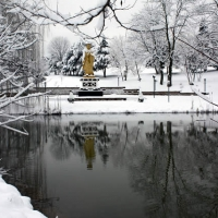 Winter view of Lotus Garden