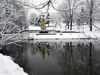 Winter view of Lotus Garden
