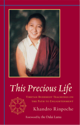This Precious Life bookcover